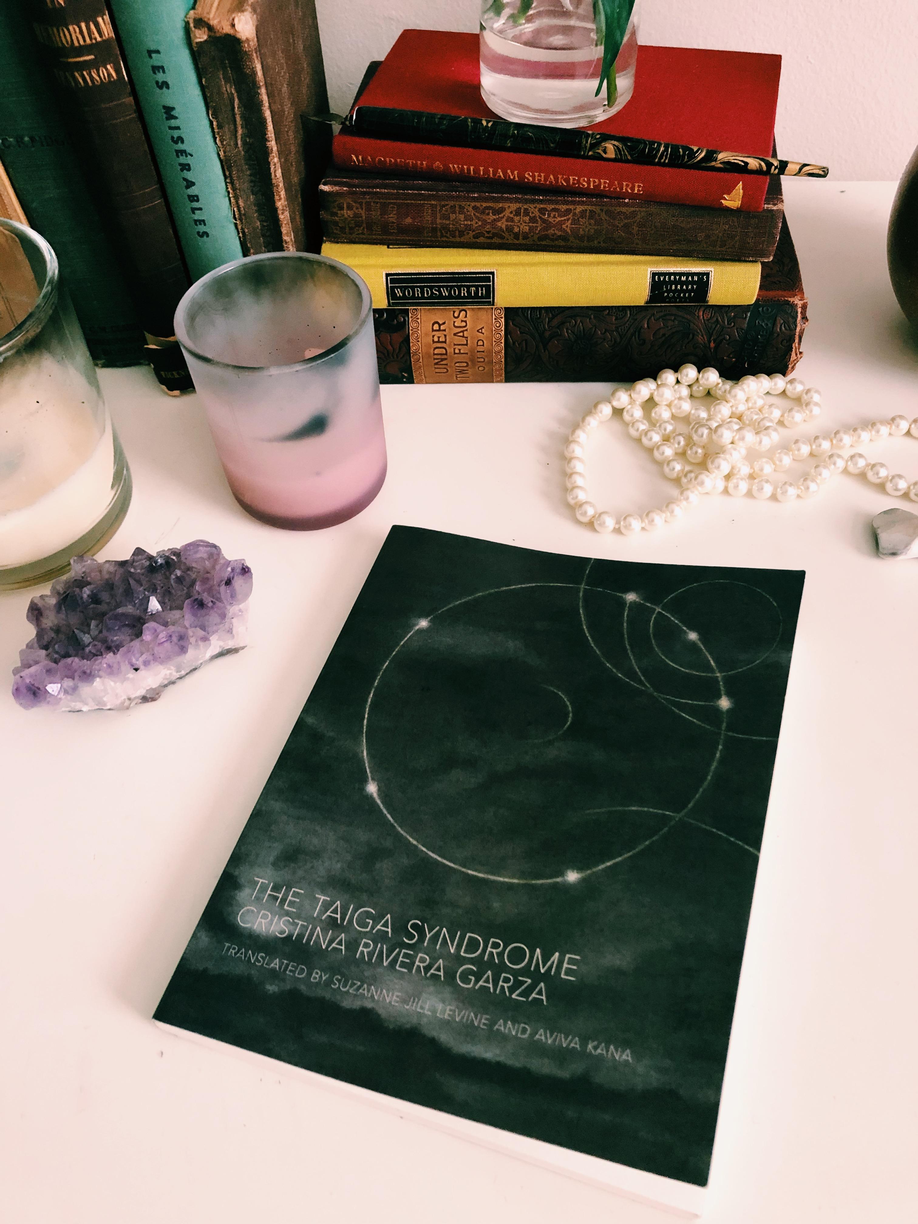 Book Review The Taiga Syndrome by Cristina Rivera Garza ...